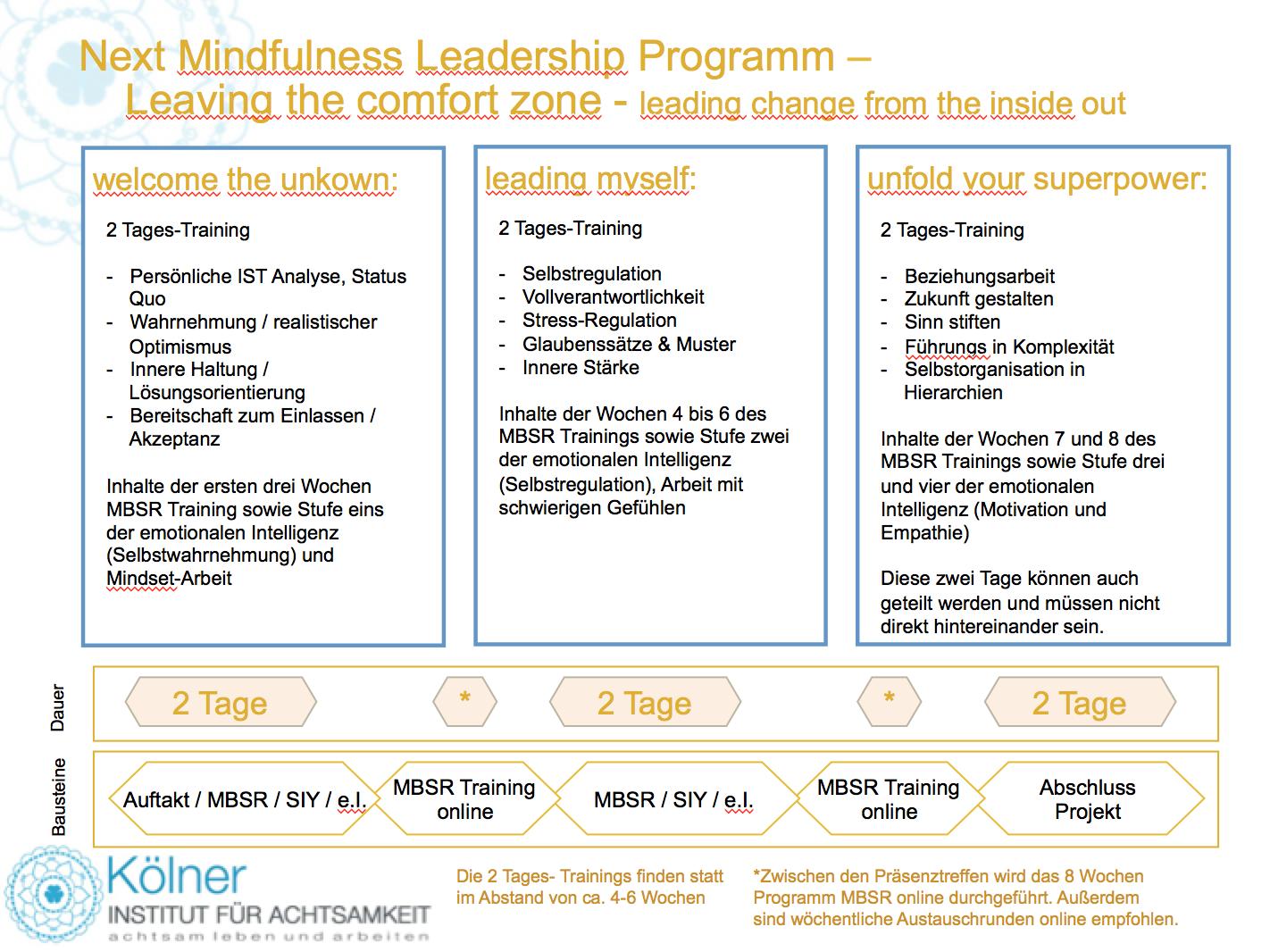 Next Mindfulness Leadership Program